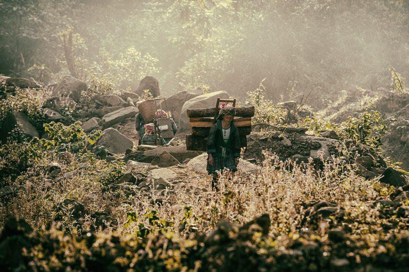 hmong tribe girl at dawn above mu cang chai 800px © Hamish Scott-Brown